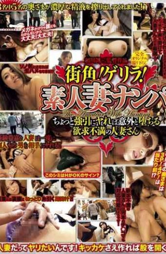 WA-224 – Street Corner!guerrilla!wife Of Mr. Frustrations Fall Unexpectedly If Ya Forcibly Re Nampa Little Amateur Wife